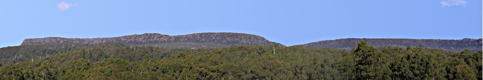 Wilderness guided walks, Tasmanian wildlife, bushwalking, Wilderness Lodge accommodation, Great Western Tiers, Deloraine