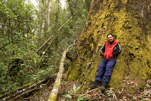 Sean Cadman Guided Day Walks, Ecotours, Tasmanian wildlife, bushwalking, Wilderness Lodge accommodation, Deloraine